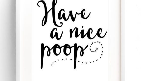 bathroom quotes have a nice poop sign funny bathroom wall art bathroom sign bathroom QWUYASV