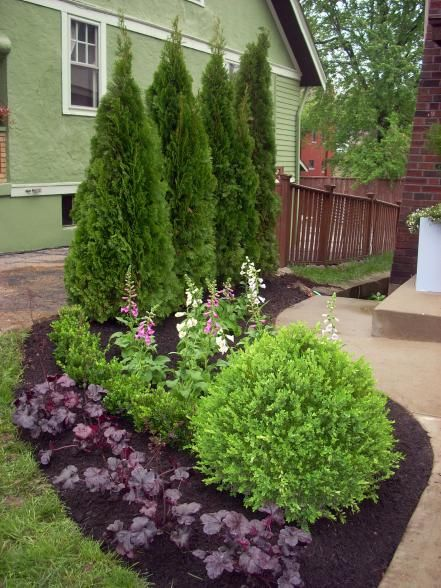 landscape ideas 14 inexpensive landscape plants TSRFTRT