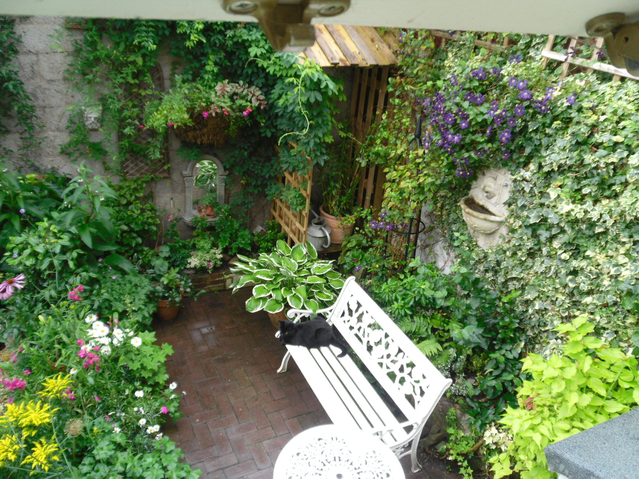 make your homes a better place with small gardens - carehomedecor NDPNZDN