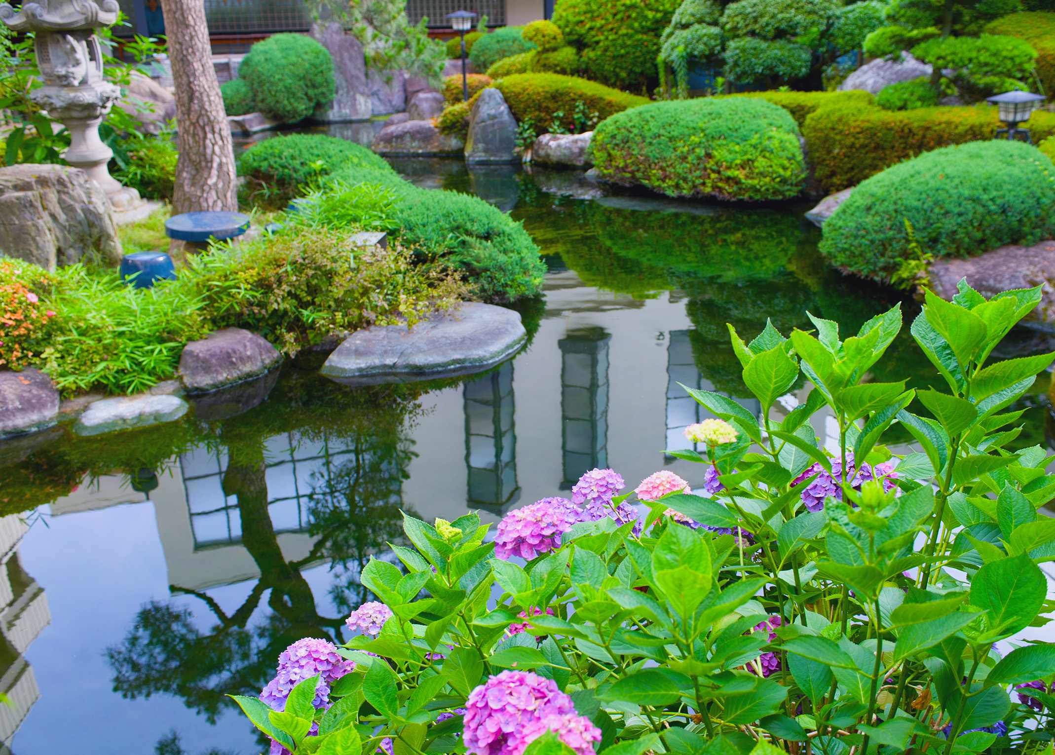 Add a natural look to your house with water gardens for Types of pond design