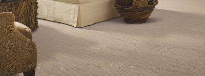 mohawk carpet majestic bounty carpet, porpoise carpeting | mohawk flooring AJIUTIA