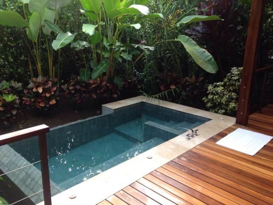 plunge pool natural plunge pools - google search more GUMBLSS