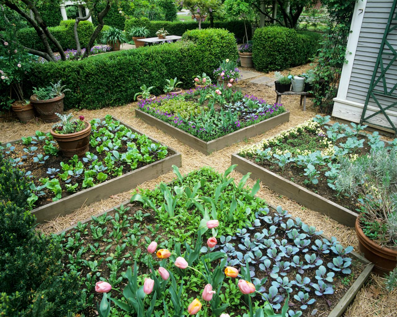 raised bed garden design KNKMCOT