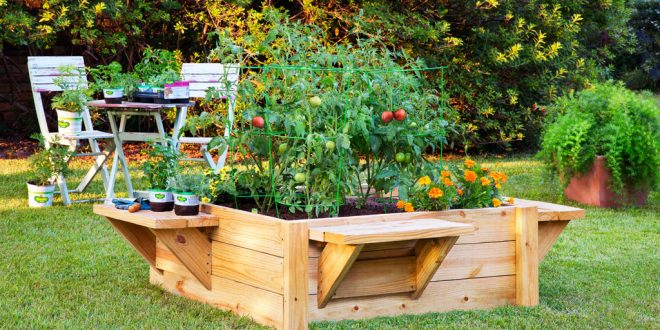 raised bed garden how to build a raised bed with benches - bonnie plants BJUIAGA