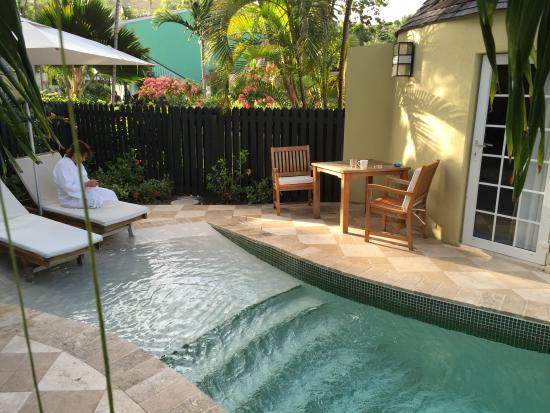 Experience Luxury In Your Home By Having A Plunge Pool