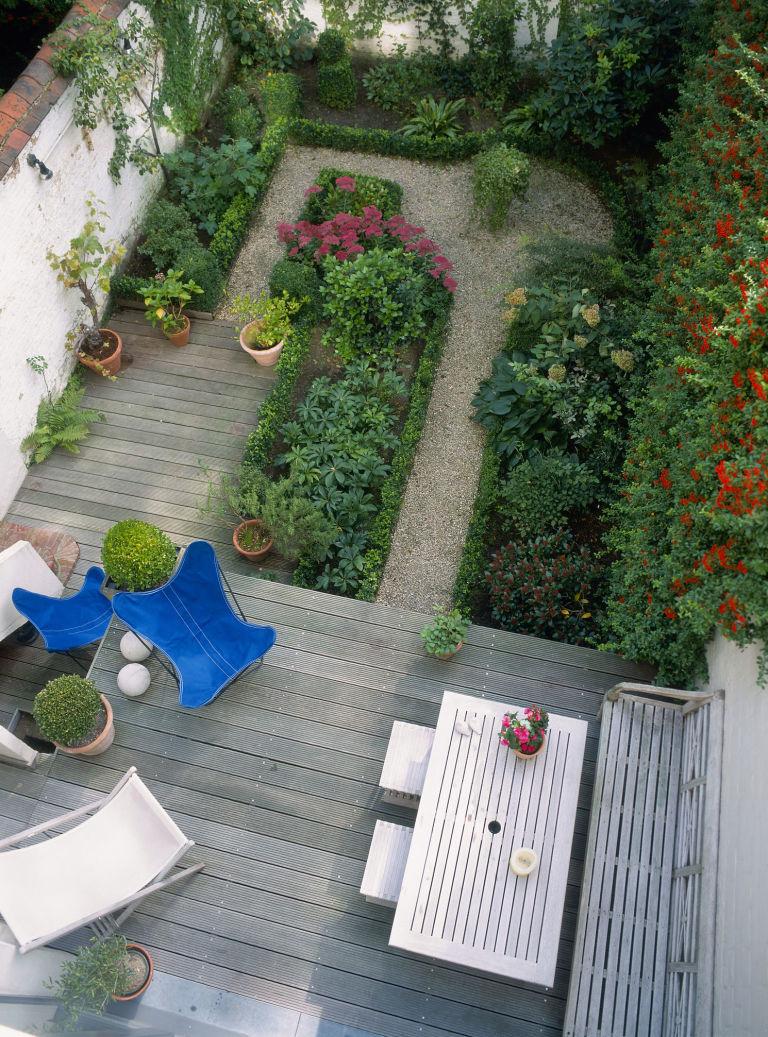 small gardens firethorn (pyracantha) growing on wall in decked garden FGOQVOC
