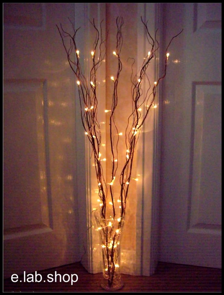 twig lights in tall vases filled with orchids and peacock feathers for IWBVBEU