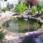 Add a natural look to your house with water gardens