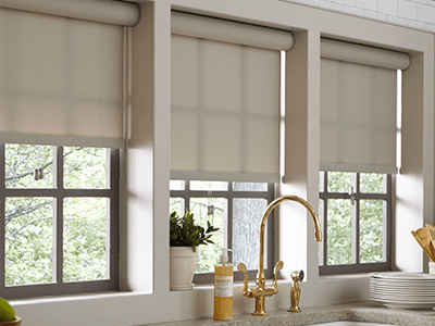 window treatment roller shades UXBINPX