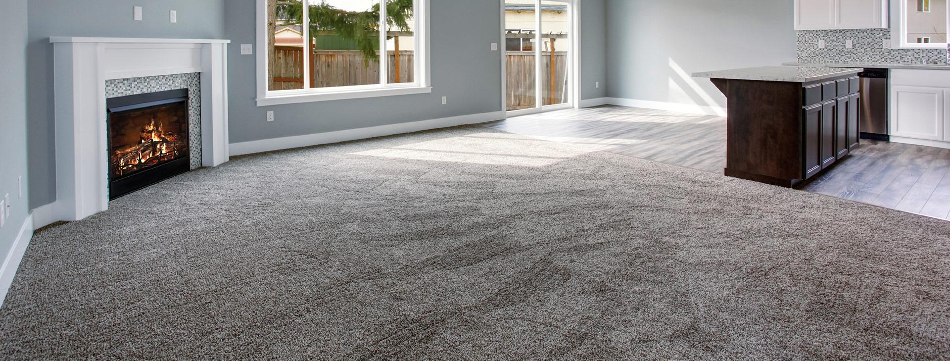 best carpet carpet cleaning FWDBHSW