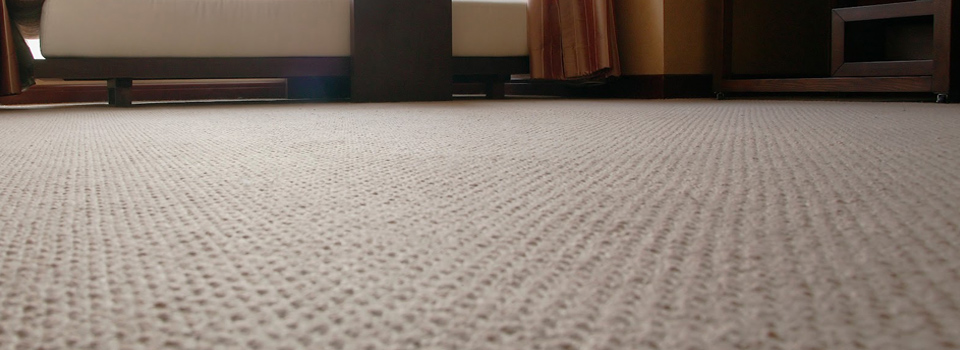 best carpet carpet cleaning TCNHCIR