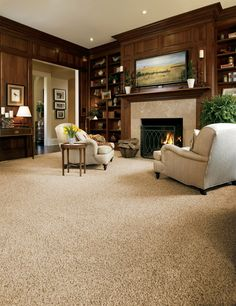 carpeting ideas stainmaster carpet idea gallery | carpets, rugs FNJLMQS