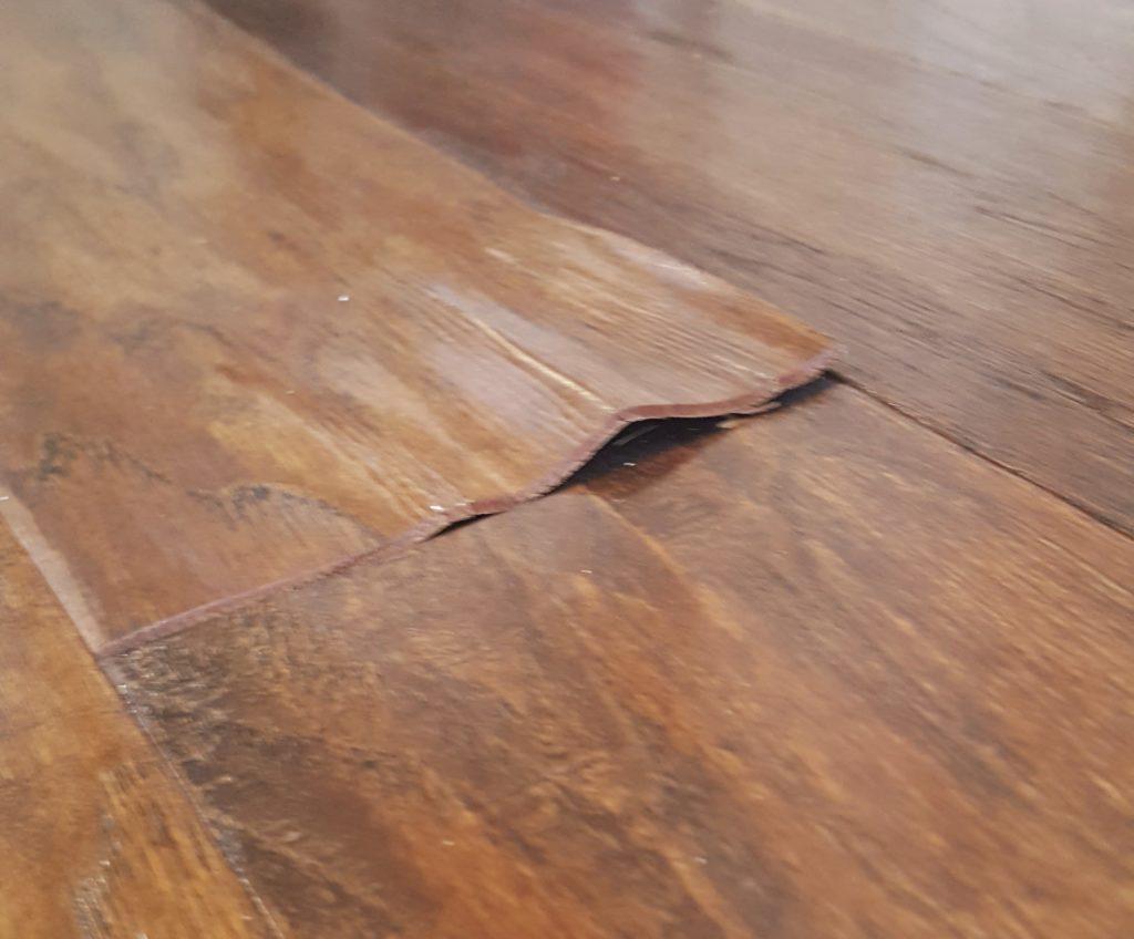 engineered hardwood floors water-damage-on-engineered-hardwood-floor VEZGKEG