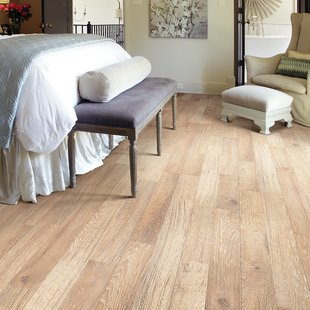 shaw laminate flooring belvoir 8 CEICGSY