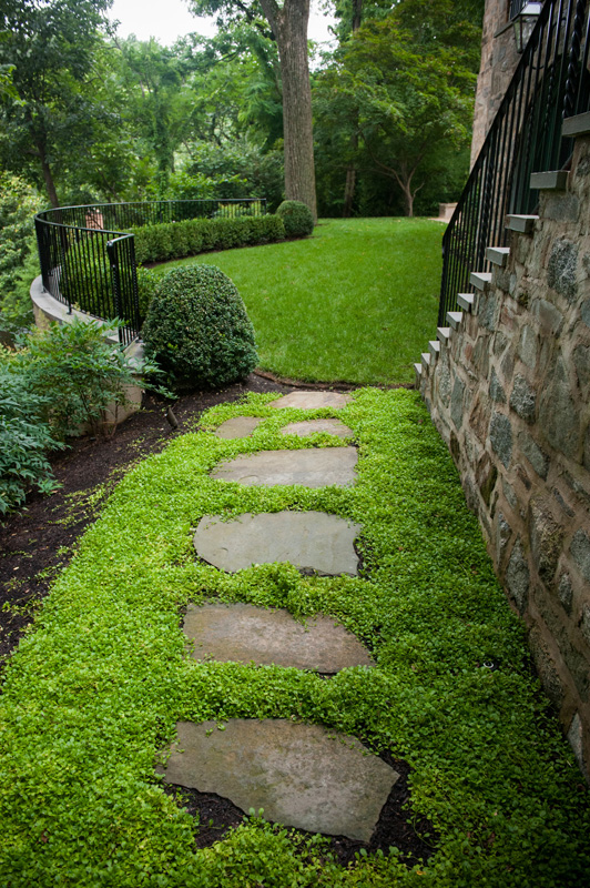 Stepping Stones ground cover and irregular stepping stones - d u0026 a dunlevy landscapers, inc. RDZPRBI