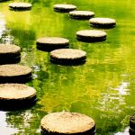 Rediscover Stepping Stones In Home Design