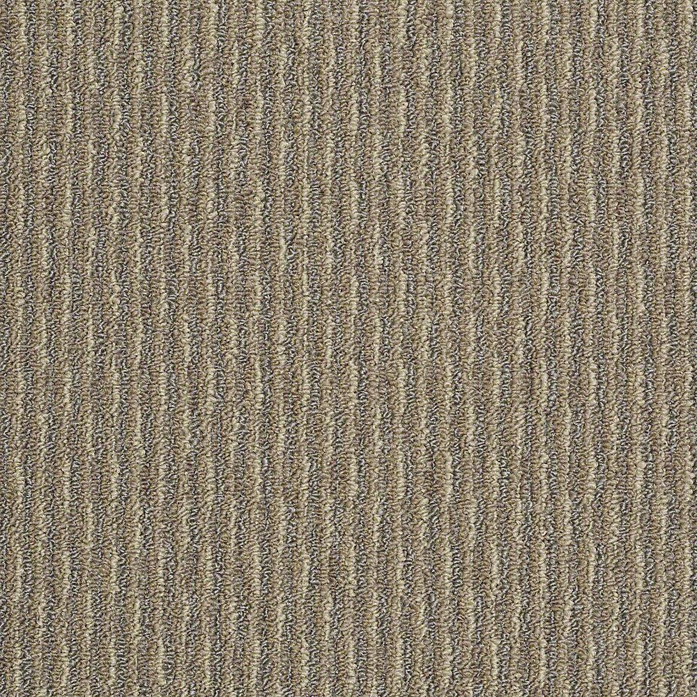 trafficmaster commercial carpet sample - morro bay - in color desert beige NXXDITH