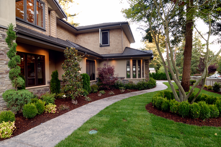 front yard landscaping ideas on a budget evergreen trees front yard DQKUOSI