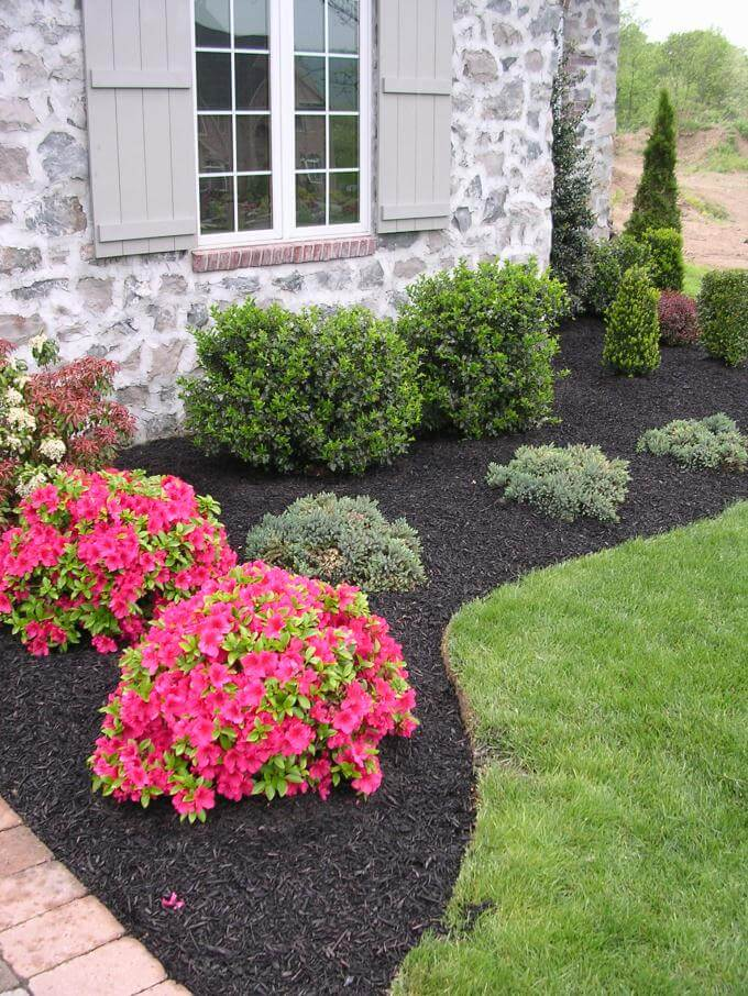 low maintenance landscaping ideas front yard low maintenance evergreen border with a pop of color SIKGRDH