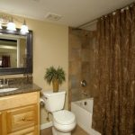 Building Basement Bathroom – More   Feasible Option