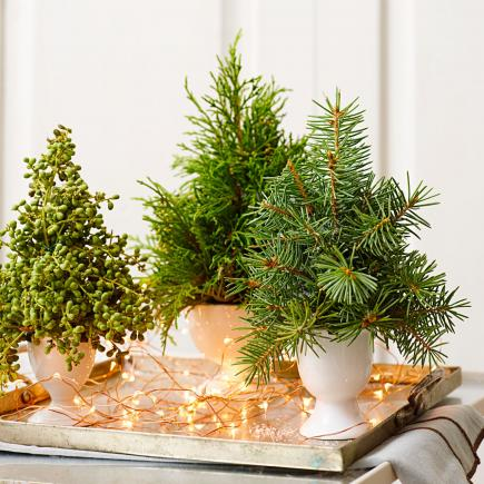 50 Quick and Easy Holiday Decorating Ideas | Midwest Living