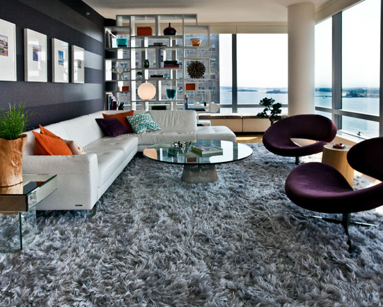 Shaggy Shaggy carpet -120 and stylish ideas for living room