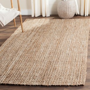 Soft Natural Fiber Rug | Wayfair