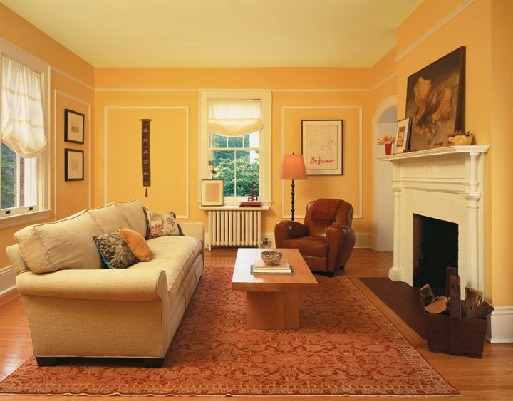 Painting House Interior Design Ideas Looking for Professional House
