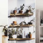 Shelving Ideas for a Well-Organized Home