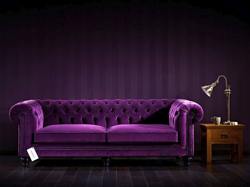 how a purple sofa caused a facebook frenzy TKWIQAS