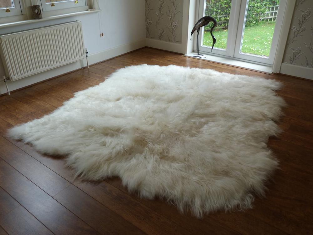 icelandic sheepskin rug ... AEBYCSW