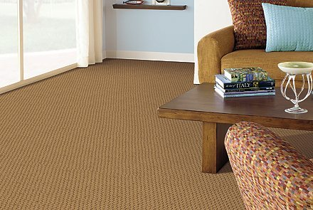 mohawk carpet benefits of mohawk smartstrand silk carpet YSDCERL