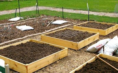 raised bed garden how to build raised garden beds RFVGTDP
