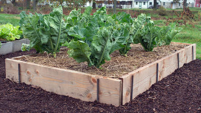 raised bed garden plank and rebar raised bed WXWSALQ