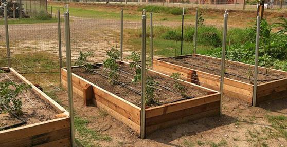 raised bed garden raised garden beds QWCMSYB