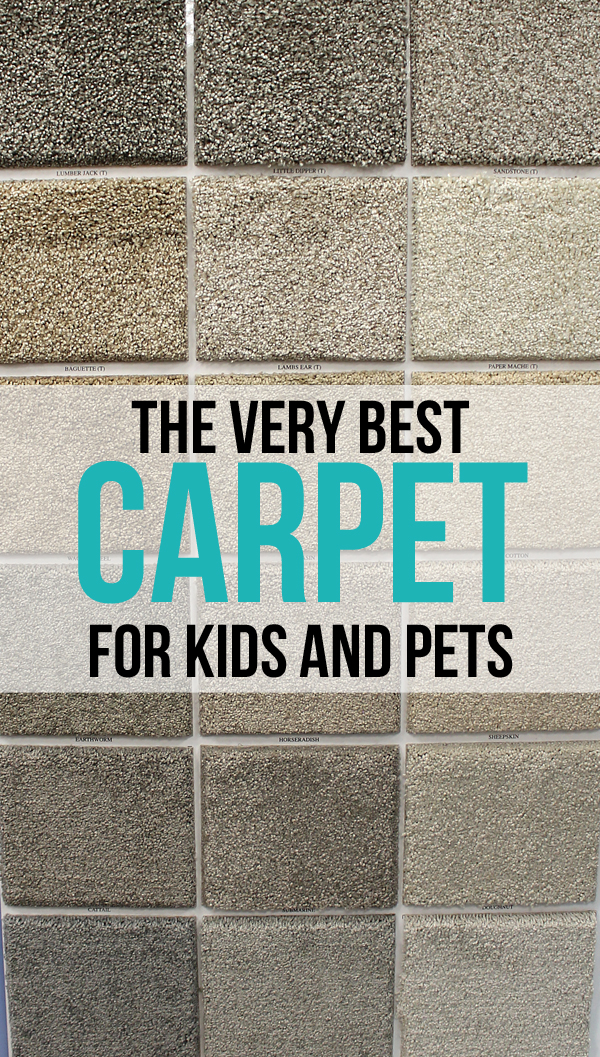 best carpet for pets WOAXBRI