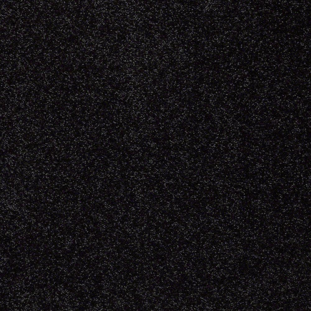 black carpet platinum plus carpet sample - joyful whimsey - in color black to basic DBTDZKD