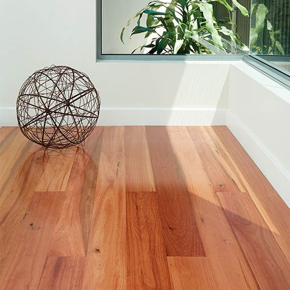 floating floors preference select sydney blue gum | preference select | engineered floating  floors JOWEDIA