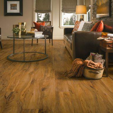 flooring ideas living/family rooms JJAUNUZ