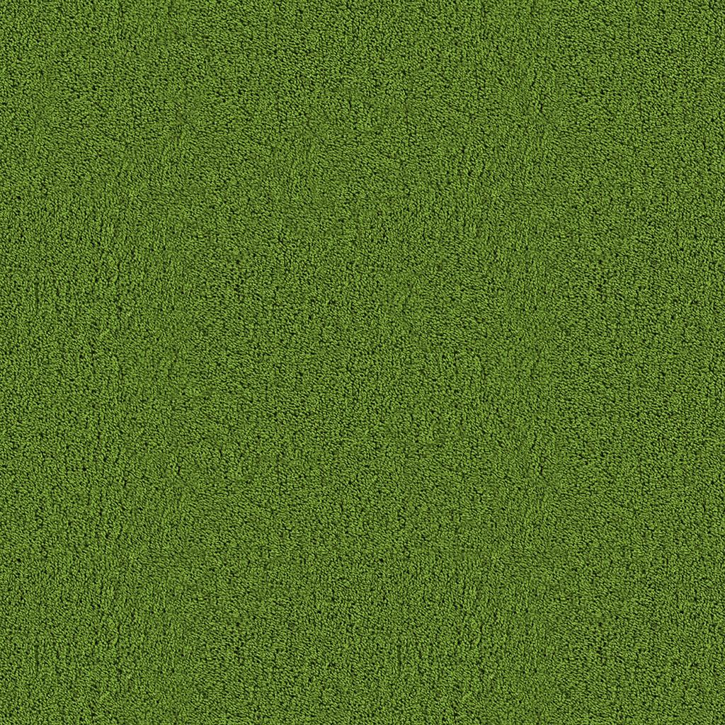 green carpet download as .jpg RPCXGLN