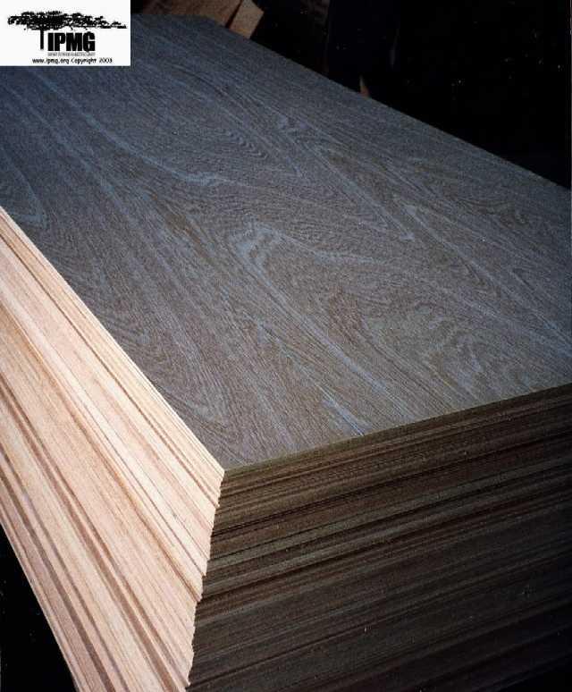 imported hardwood plywood - buy plywood product on alibaba.com WMMHPTI