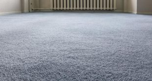 kind of carpets naturalduraholdrugpad LODZKKG