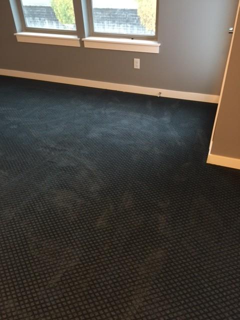 my brand new black carpet looks green and blue! ZGUCUQB