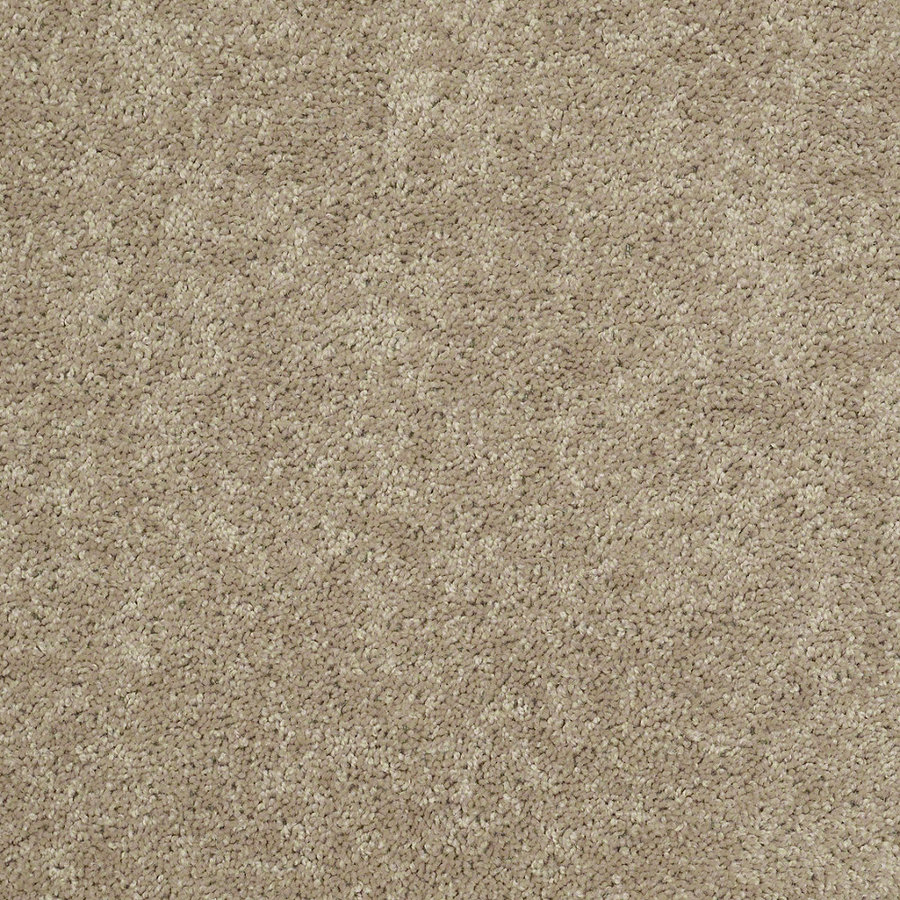 Shaw carpet shaw stock sand textured indoor carpet UXJWTHS
