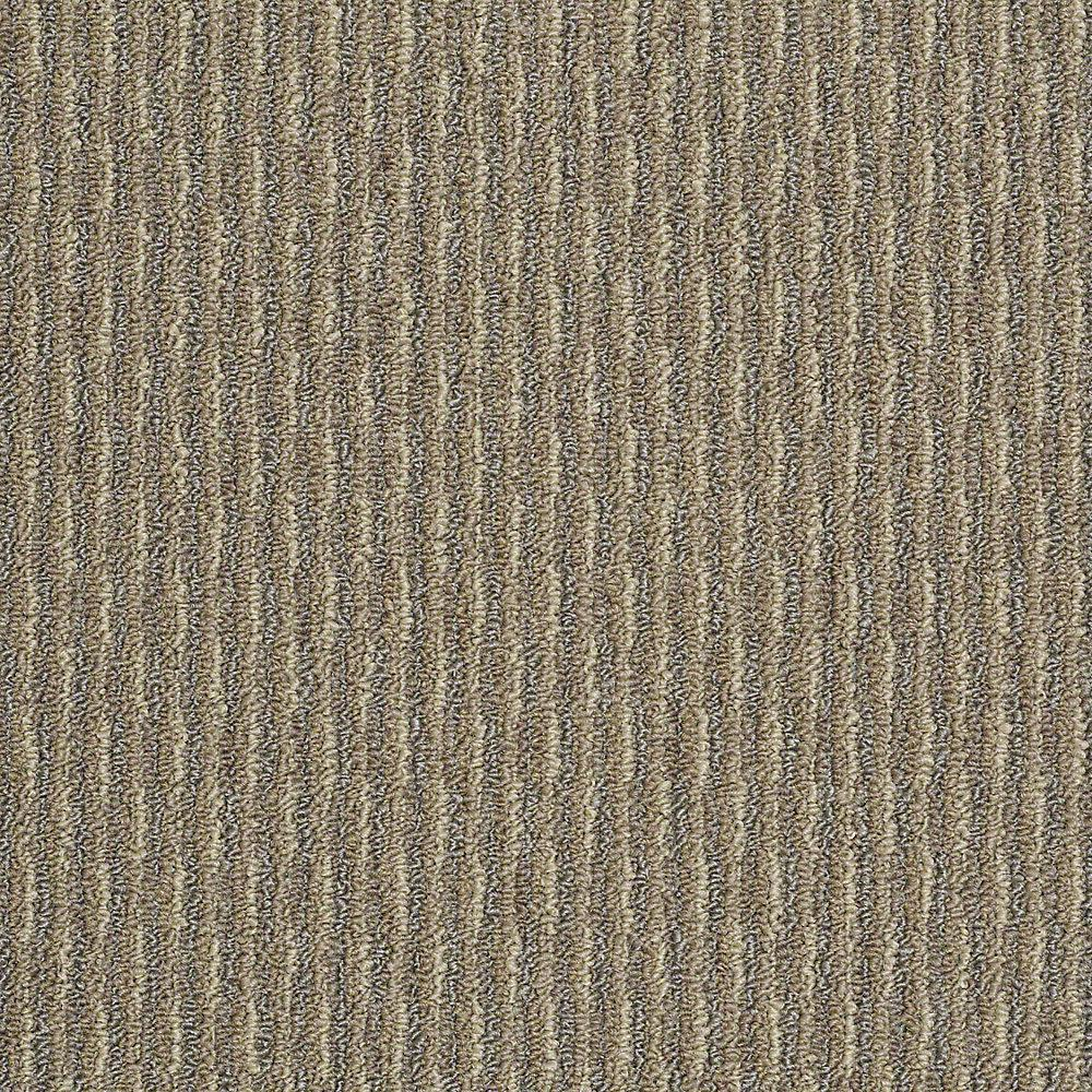 trafficmaster commercial carpet sample - morro bay - in color desert beige NXXDITH