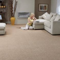 carpet for room super top twist® carpet CWRMAMV