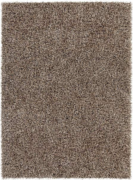 Amazon.com: Chandra Rugs Blossom Area Rug, 60-Inch by 84-Inch, Taupe