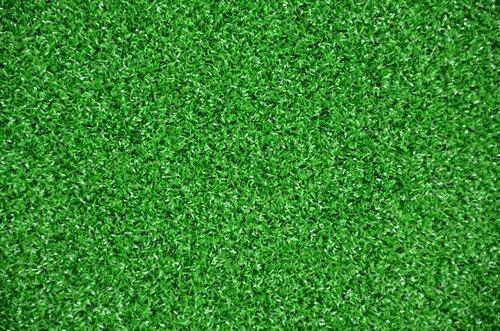 Dean Indoor/Outdoor Green Artificial Turf Rug - 6' x 8'
