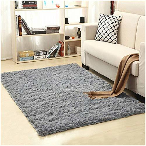 LOCHAS Ultra Soft Indoor Modern Area Rugs Fluffy Living Room Carpets