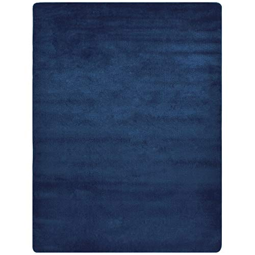 Dark Blue Rugs: Amazon.com
